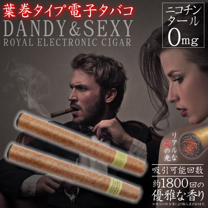 葉巻タイプ電子タバコ 「DANDY&SEXY」 HZ-ECH001