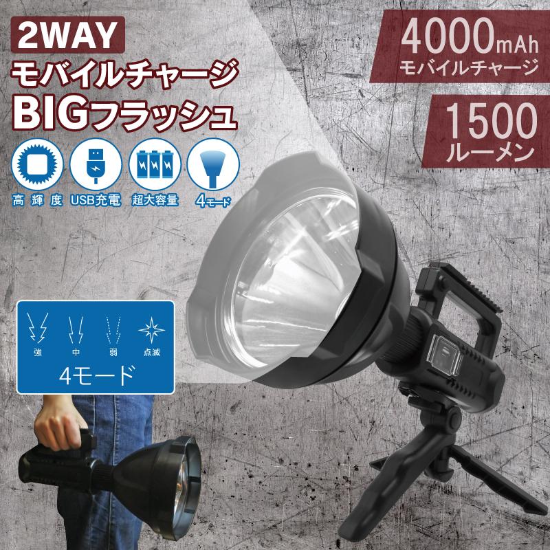 2WAY モバイルチャージBIGフラッシュ DLSD3461500