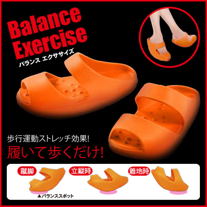 Balance Exercise(バランス エクササイズ)