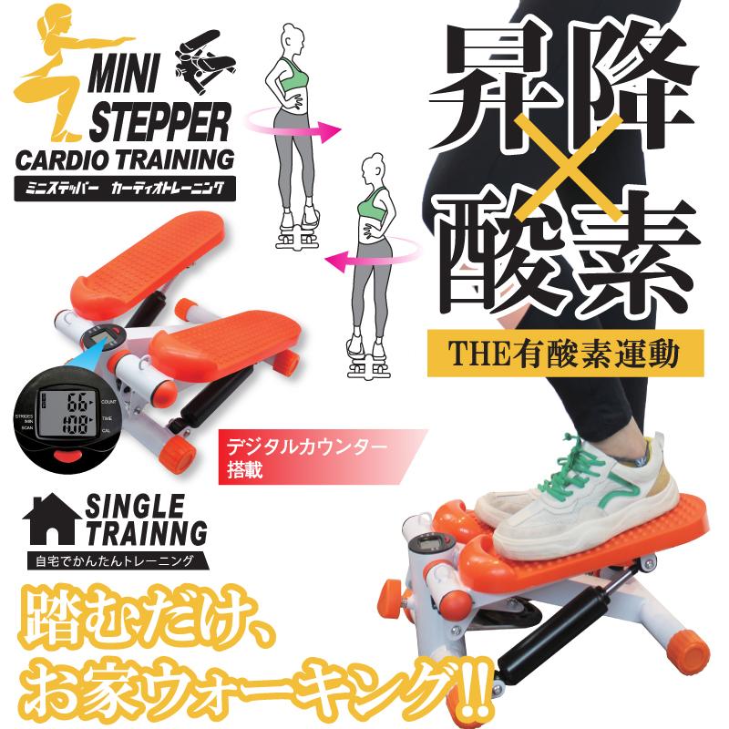ミニステッパーカーディオトレーニング DL-200622-02