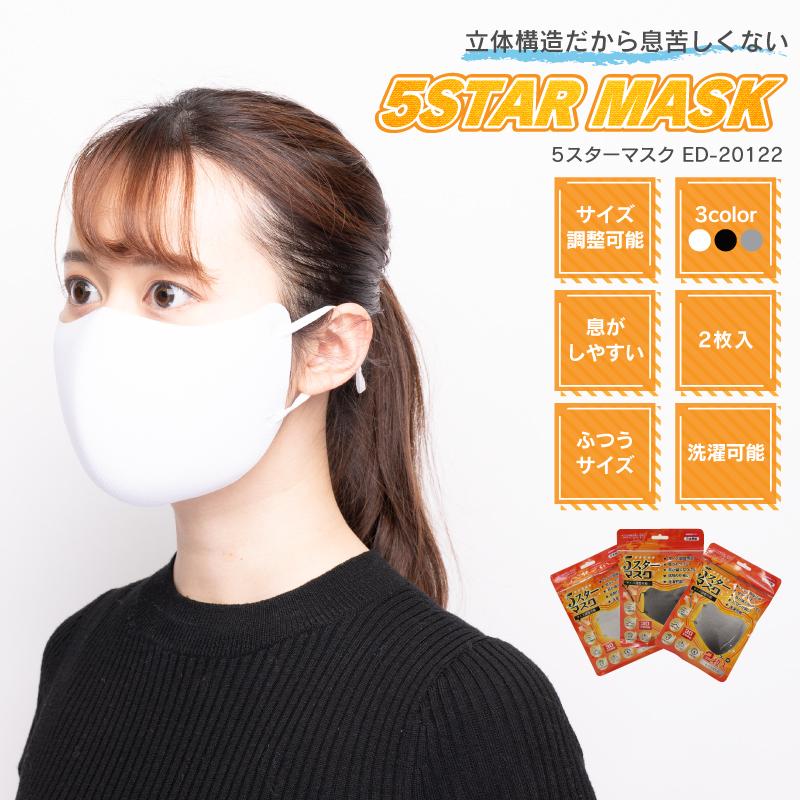 5スターマスク 2枚入り ED-20122